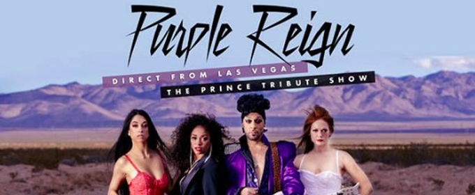 Purple Reign - Prince Tribute at Moran Theater at Times Union Center